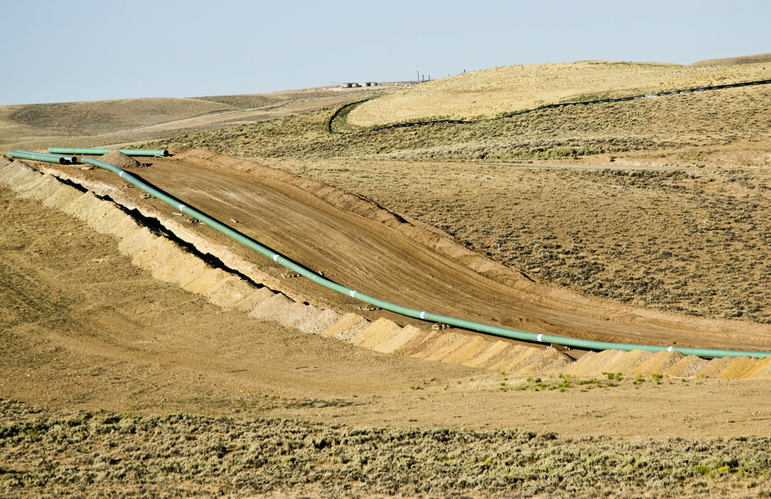 Pipeline Reclamation, Native Seed