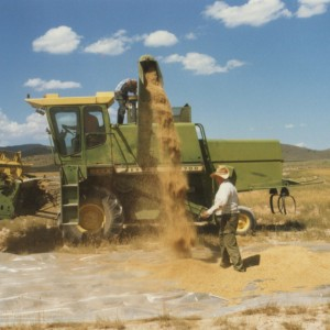 Combine & Crested Wheatgrass