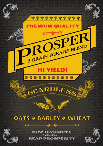Prosper 3 Grain Forage Blend