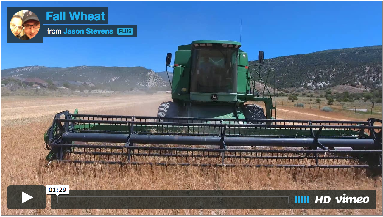 New Combine at Great Basin Seed