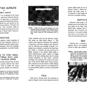 lahontan alfalfa